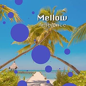 # 1 Album: Mellow Ambience