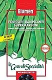 Fagiolini Rampicanti Supermarconi