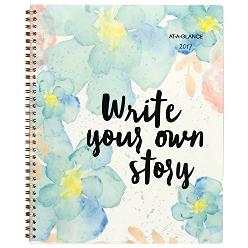 """AT-A-GLANCE Weekly / Monthly Planner / Appointment Book 2017, 8-1/2 x 11"""", B-Positive (187-905)"""