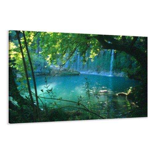 bestpricepictures 80 x 60 cm Bild auf Leinwand Bäume 4164-SCT deutsche Marke und Lager - Die Bilder/das Wandbild/der Kunstdruck ist fertig gerahmt