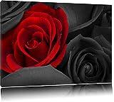 roses rouges romantiques noir / blanc sur toile, énorme XXL photos complètement encadrée avec civière, impression d'art sur ??la photo murale avec cadre, moins cher que la peinture ou une peinture à l'huile, pas une affiche ou une bannière