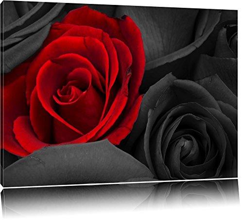 romantische rote Rosen schwarz/weiß auf Leinwand, XXL riesige Bilder fertig gerahmt mit Keilrahmen, Kunstdruck auf Wandbild mit Rahmen, günstiger als Gemälde oder Ölbild, kein Poster oder Plakat