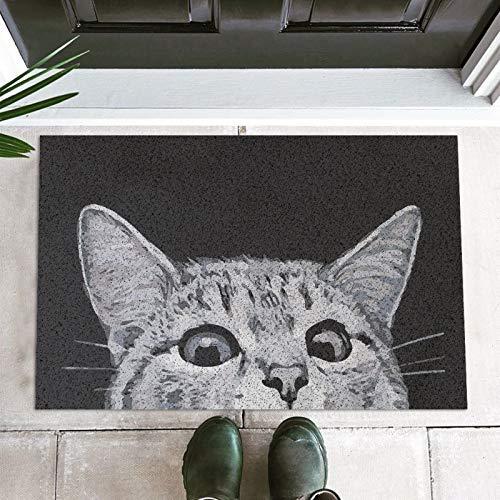 Cat Front Door Mat Outdoor Mud Absorbent, Welcome Mat Entrance Door Mat Rug Carpet, Outside...