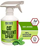 Cat Repellents - Best Reviews Guide
