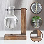 Water Planting Glass Vase,Clear Glass Vase Hanging Plant Terrarium with Retro Solid Wooden Stand for Hydroponics Plants… 13 ♚MATERIAL-Wooden+Glass.Great for floral arrangement, home decoration as well as various gift ideas ♚ DESIGN - Vintage design,DIY Planter with mini bulb shape vase in wooden stand. Smooth surface, good permeability, beautiful style ♚DECORATION- Fill with small plants,goldfish,or other decorative objects like beach sand and shells you collected and use as an eye-catching decorative accent for any space. Ideal for home, office, garden, wedding or holidays as a decoration.