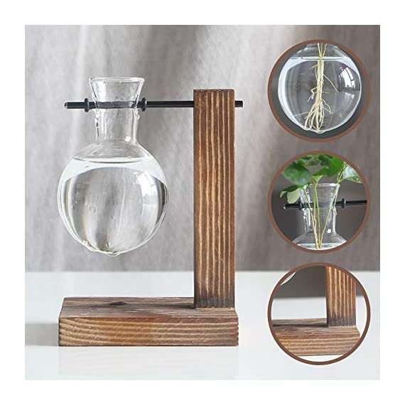 Water Planting Glass Vase,Clear Glass Vase Hanging Plant Terrarium with Retro Solid Wooden Stand for Hydroponics Plants… 6 ♚MATERIAL-Wooden+Glass.Great for floral arrangement, home decoration as well as various gift ideas ♚ DESIGN - Vintage design,DIY Planter with mini bulb shape vase in wooden stand. Smooth surface, good permeability, beautiful style ♚DECORATION- Fill with small plants,goldfish,or other decorative objects like beach sand and shells you collected and use as an eye-catching decorative accent for any space. Ideal for home, office, garden, wedding or holidays as a decoration.