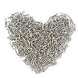 Kleine Nägel für Erstfalz Multi-Purpose DIY Nägel DIY dekorative Boxen Zubehör 1 * 8mm Silber 500pcs Großhandel