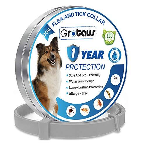 GROTAUS Collare antipulci e zecche per Cani – Collare Sicuro ed Efficace per Controllo delle zecche e delle pulci per Tutte Le Taglie