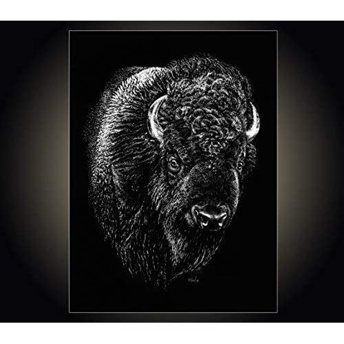 Art print POSTER White Cloud at the National Buffalo Museum