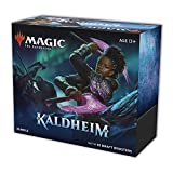 Magic The Gathering Kaldheim Bundle | 10 Draft Boosters (150 Magic Cards) + Accessories