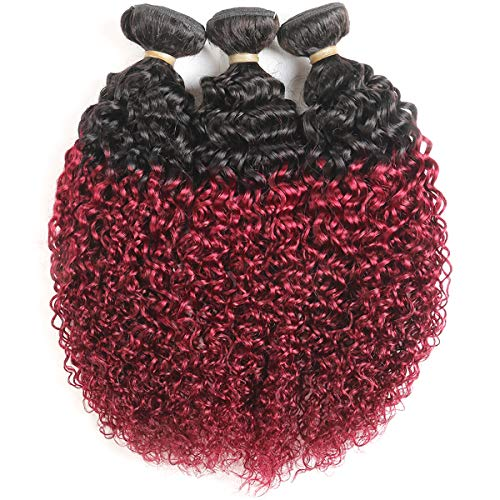 Feelgrace (Fast Delivery) Ombre Black to Wine Red Kinky Curly Human Hair Bundles 3 Pcs 300 Gram Virgin Brazilian Remy Hair Kinky Curly Weave Bundle for Black Women Girls (10 12 14 inches)