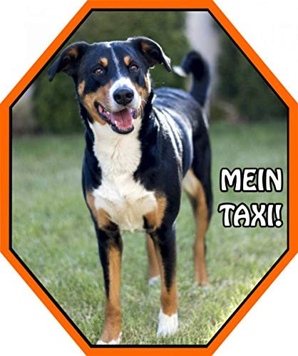 Petsigns Aufkleber Appenzeller Sennenhund - Markenfolie - wetterfest - Klebebild, 22 x 18,5