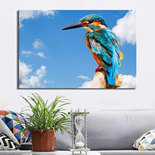 Carteles e impresiones pájaros modernos pintura lienzo para pared decoración del hogar imágenes coloridas del martín pescador para decoración la pared sala estar cuadros decoracion salon 20x28inch