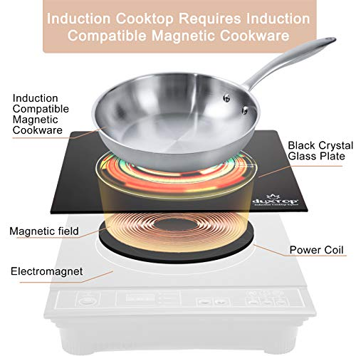 Product Image 6: Duxtop 1800W Portable Induction Cooktop Countertop Burner, Gold 8100MC/BT-180G3