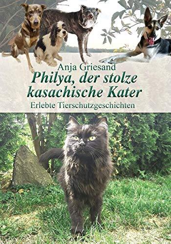 Philya, der stolze kasachische Kater: Erlebte Tierschutzgeschichten