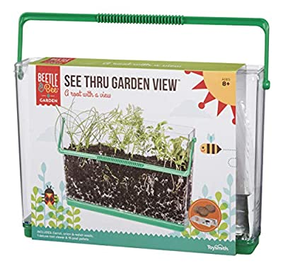 Beetle & Bee See Thru Garden View by Toysmith, Root Viewer - DIY Arts & Crafts Gardening for Kids & Teens, Boys & Girls, See Thru Root Viewer, New Style from Toysmith