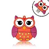 Novelty Big Eyes Owl Shape Design 16GB USB 2.0 Animal Flash Drive Cute Memory Stick Thumb Drive Data Storage Pendrive Cartoon Jump Drive Gift