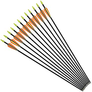 NIKA ARCHERY Fiberglass Arrows for Youth Practise Recurvebow Compound Bow Shooting 12 pcs/lot