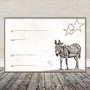 Boxenschild Stallschild Stalltafel Namensschild Pferd 'Esel, Muli, Maultier' 20x30cm Alu