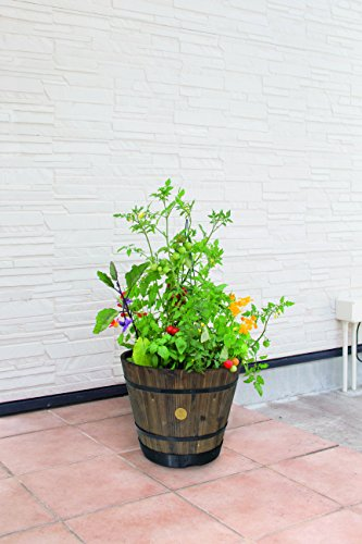 Barrel Planter Large 55cm Burnt Oak Finish