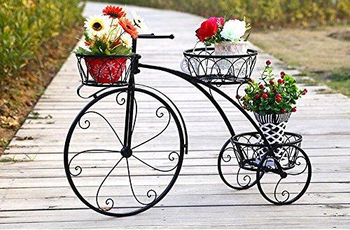 Étagères BOBE Shop- Ensemble de Fleurs en Fer à Plusieurs étages, Cadre de Fleur, châssis, châssis, châssis, Style européen, créatif, Salon, Pot de Fleurs (Couleur : Noir, Taille : 60 * 44cm)