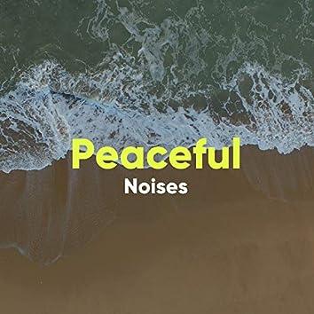 Peaceful Noises of White Noise