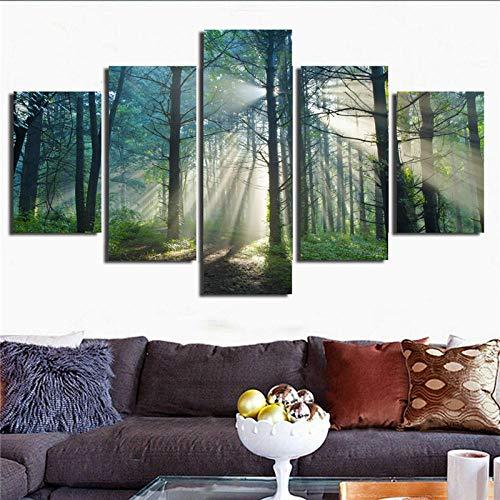 Wodes Pintura Sobre Lienzo En La Pared Artista Residencia Decoración Hd Imagen Impresa 5 Paneles Luz Solar Bosque Naturaleza Paisaje Árbol Poster 30 * 40 * 230 * 60 * 230 * 80Cm Sin Marco