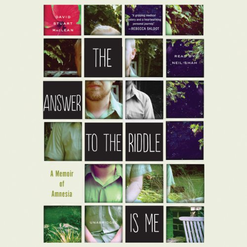 The Answer to the Riddle Is Me audiobook cover art