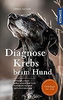 Diagnose Krebs beim Hund: Behandlungsmoeglichkeiten aus Tiermedizin und Naturheilkunde