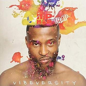 Vibeversity