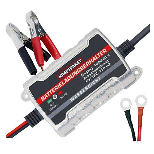 Dino KRAFTPAKET 136303 750mAh-6V/12V Erhaltungsladegerät Batterieladegerät IP65 für KFZ Auto Motorrard Quad ATV Boot