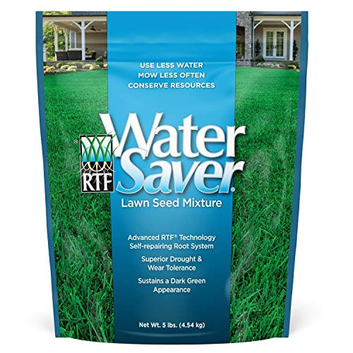 WaterSaver Grass Mixture with Turf-Type Tall Fescue Used to Seed New Lawn and Patch Up Jobs - Grows in Sun or Shade, 5 lbs - covers 1 50 Acre