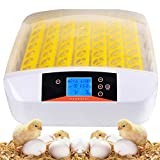 OppsDecor Egg Incubator, 56 Eggs Digital Incubator with Fully Automatic Egg Turning and Humidity Control 90W Clear...