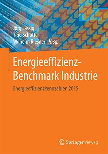 Energieeffizienz-Benchmark Industrie: Energieeffizienzkennzahlen 2015