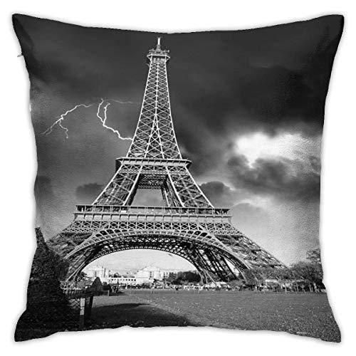 Traveler Shop Funda de Almohada Detalle arquitectónico de Paris Fundas de Almohada estándar Fundas de cojín de poliéster respetuosas con la Piel para el Cabello y la Piel, 45 x 45 cm