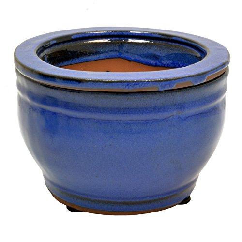 Top violet pot self watering for 2021