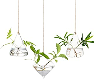 Glass Large Hanging Planters Water Air Plant Succulent Containers Terrarium Kits Candle Holder Indoor Outdoor 2 Holes 3Pc...