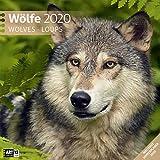 Wölfe 2020, Wandkalender / Broschürenkalender im Hochformat (aufgeklappt 30x60 cm) - Geschenk-Kalender mit Monatskalendarium zum Eintragen