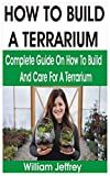 HOW TO BUILD A TERRARIUM: COMPLETE GUIDE ON HOW TO BUILD AND CARE FOR A TERRARIUM