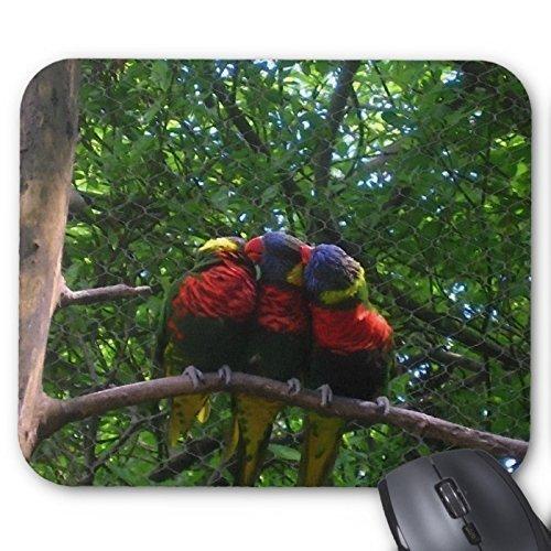 Goobull Tre pappagalli sull' albero tappetino per mouse rettangolare Mousepad lovely Bird mouse pad personalizzato Mousepad tuta per mouse