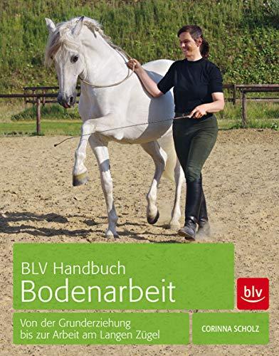 BLV Handbuch Bodenarbeit: Von der Grunderziehung bis zur Arbeit am Langen Zügel