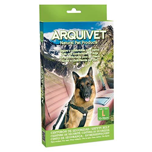 Arquivet 8435117812925 – Ceinture Sécurité TG 70 – 90 cm