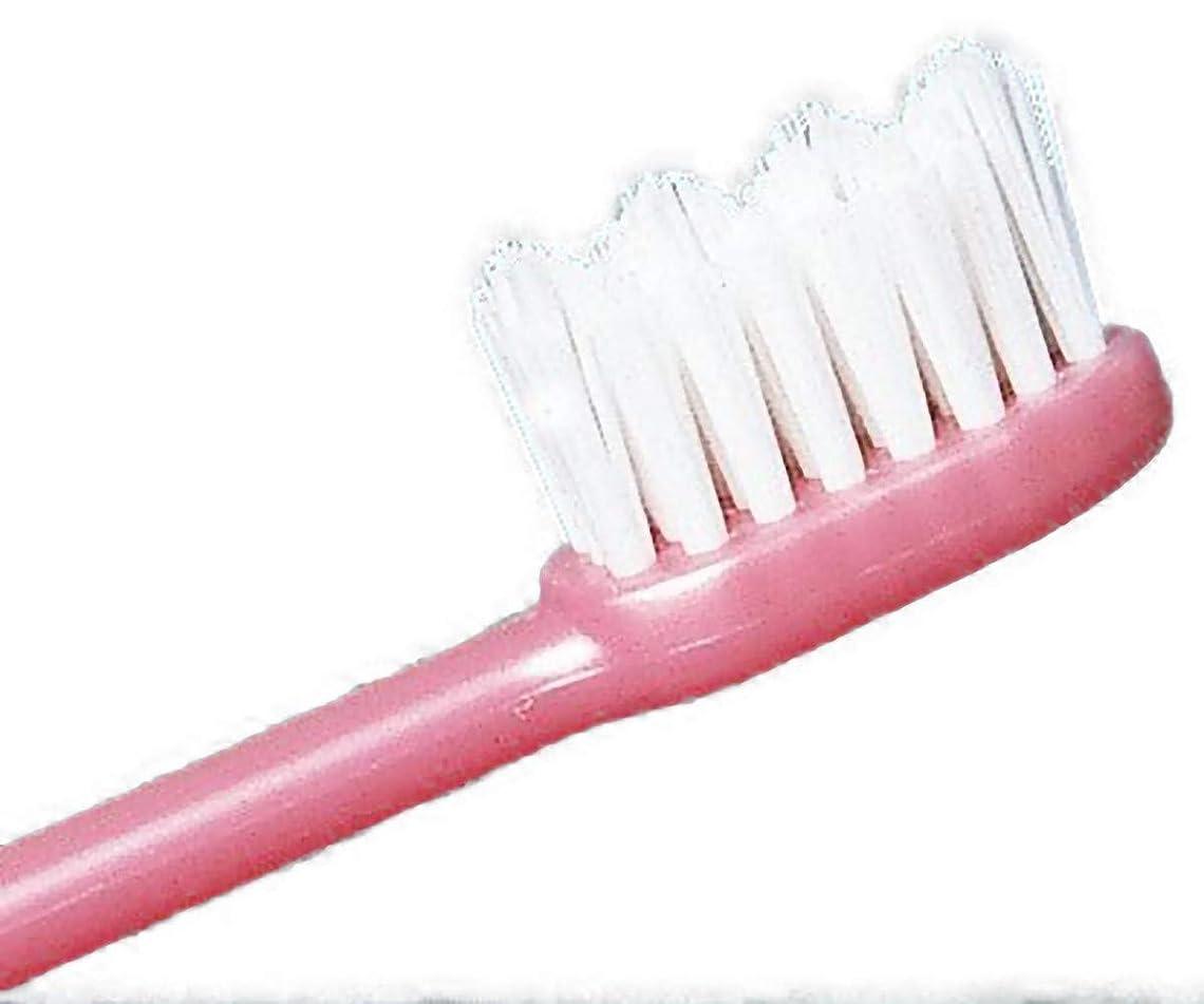 代表団怠割り込みFJK ホワイト歯ブラシ「水だけのブラッシングでもOK!」3本セット