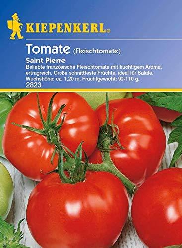 Portal Cool Kiepenkerl Seed Tomate Saint Pierre