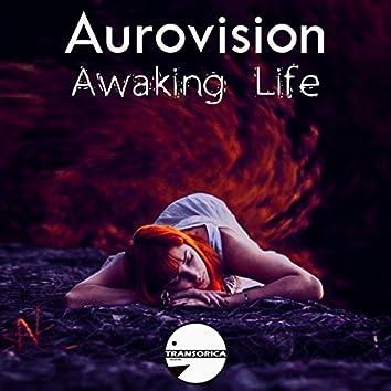 Awaking Life