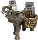 DWK Savanna Season Elephant Salt and Pepper Shaker Holder | Salt and Pepper Sets Kitchen | Salt and Pepper Shakers Novelty | African Salt and Pepper Shaker