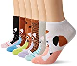 K. Bell Women's 6 Pack Novelty No Show Low Cut Socks, Cats (Pink), Shoe Size: 4-10