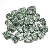 NEBSM Crystals Punto Verde Natural Jasper Piedras caídas Cristales a Granel Pulidos Piedras Gemstones Gema Crudo Aquarium Decoración Minerales Estanques y Jardines