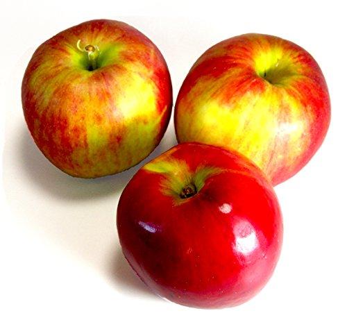 訳あり 青森りんご 紅玉 約3kg(約15個入り) 酸味が 美味しい人気のりんごです!