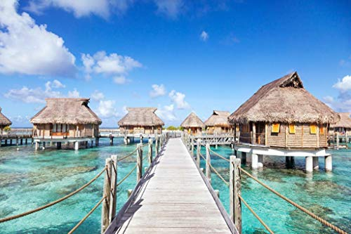 sy'decorative Bora Bora Overwater Bungalows in The Lagoon Photo Art Print Poster 24x36 inch